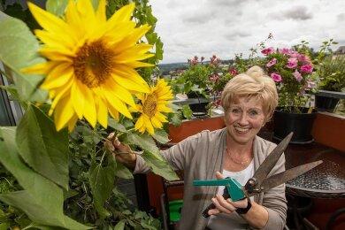 Ellen Raubold hat den Goldenen Meisterbrief im Friseurhandwerk erhalten. Die Schere hat sie nach vielen Arbeitsjahren inzwischen getauscht.