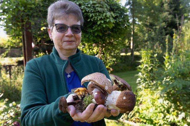 Pilzberaterin Angela Burkhart aus Cranzahl zeigt eine Auswahl von Pilzen, die zurzeit in erzgebirgischen Wäldern wachsen.