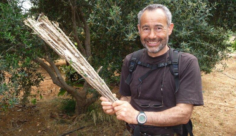"""<p class=""""artikelinhalt"""">Sieben gerettete Vögel, rund 30 entschärfte Klebefallen, da freute sich Dino Mensi. Doch kurz nach Entstehen dieser Aufnahme lag der italienische Vogelschützer von Wilderern zusammengeschlagen in der Klinik. </p>"""