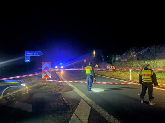 Die Polizei hielt die Tiere an der A72 bis zum Eintreffen des Halters in Schach.