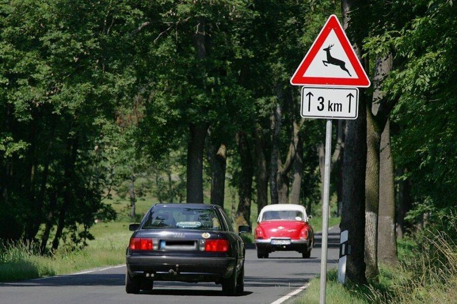Vor Wildwechsel wird in und um Plauen - wie hier zwischen Kloschwitz und Tobertitz - an vielen Stellen gewarnt.