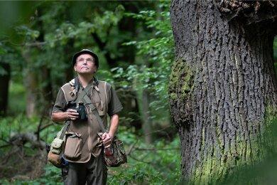 Thomas Krönert kennt als Naturschutzbeauftragter die Muldeauen wie seine Westentasche. Hier ist er im Hartholzauenwald unterwegs.