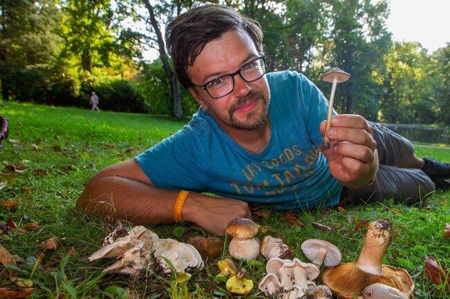 Eine erstaunliche Vielfalt an Pilzen sammelte Christian Olsson kurz vor dem Fototermin auf den Wiesen des Stadtparkes. In der Hand hält er einen genießbaren Wurzelnden Schleimrübling, dieser ist ein Pilz aus der Familie der Rindenschwammverwandten.