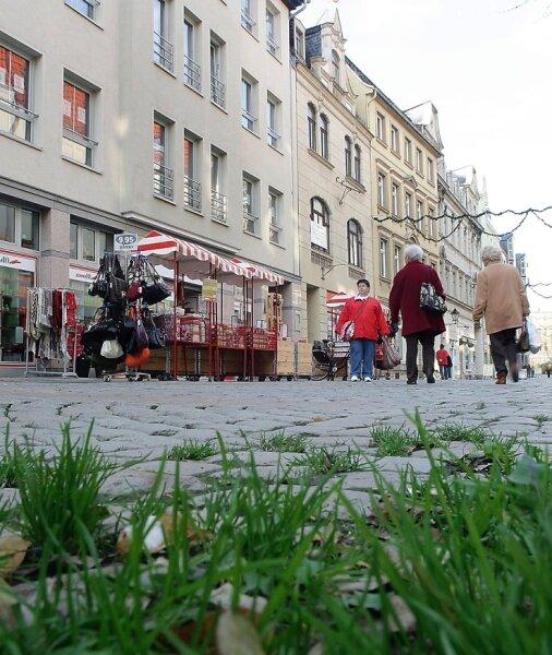 Wildwuchs auf der Zwickauer Hauptstraße: Dabei müsste sie wegen ihrer Lage zu den attraktiven Einkaufstraßen gehören.