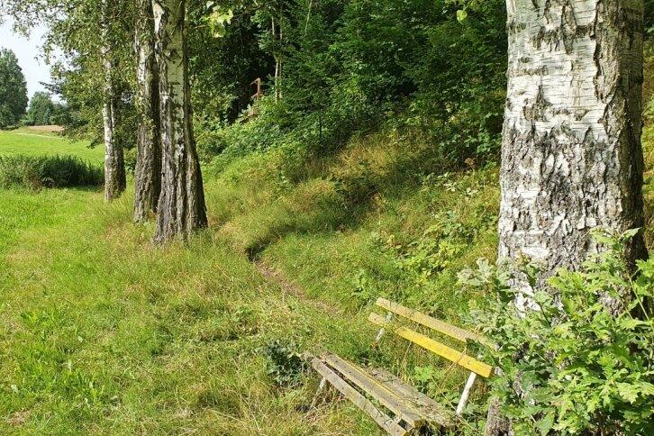 Im wie verwunschen erscheinenden Tal der Kleinen Striegis lässt es sich gut wandern.