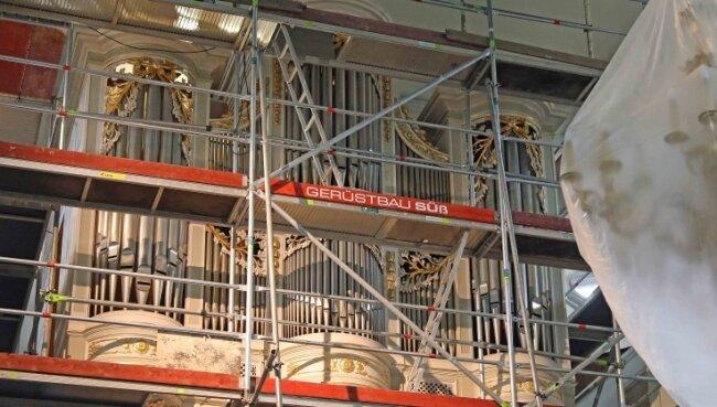 Die Orgel in der Marienkirche ist derzeit eingerüstet und wird in den kommenden drei Wochen unter anderem komplett gereinigt.
