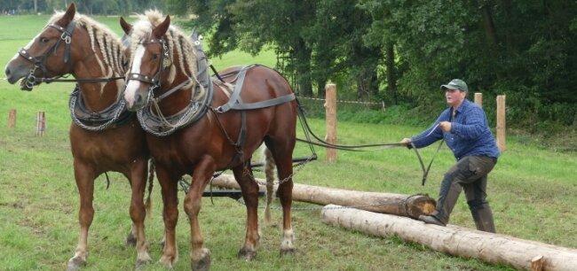 Schon beim Flechten der Zöpfe ihrer Pferde bewies Ines Bruchhold ein geschicktes Händchen - ebenso wie beim Holzrücken.