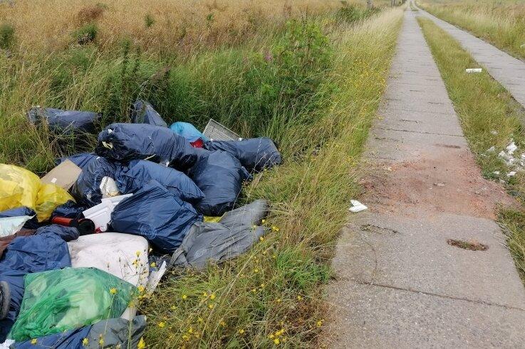 Ein Teil der illegal entsorgten Müllsäcke, die seit einer Woche am Plattenweg zwischen Pfaffengrün und Limbach liegen.