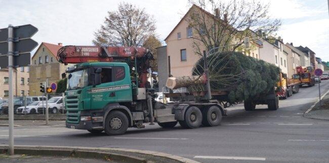 Der diesjährige Weihnachtsbaum stammt aus Cainsdorf und wurde am Dienstag in die Zwickauer Innenstadt gebracht.