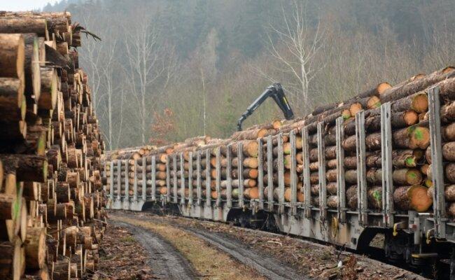 Seltenes Ereignis am Bahnhofsgelände in Zschopau: Holz in Größenordnungen wird dort verladen.
