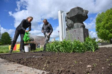 Ulrike Voigt und Matthias Höppner säen eine Blühmischung auf einem der Beete am Marx-Monument aus. Nun muss es regnen und die Sonne scheinen, damit es an der Brückenstraße schnell bunt wird.
