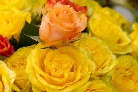 Floristinnen sollen vom boomenden Geschäft mit Pflanzen und Blumen profitieren