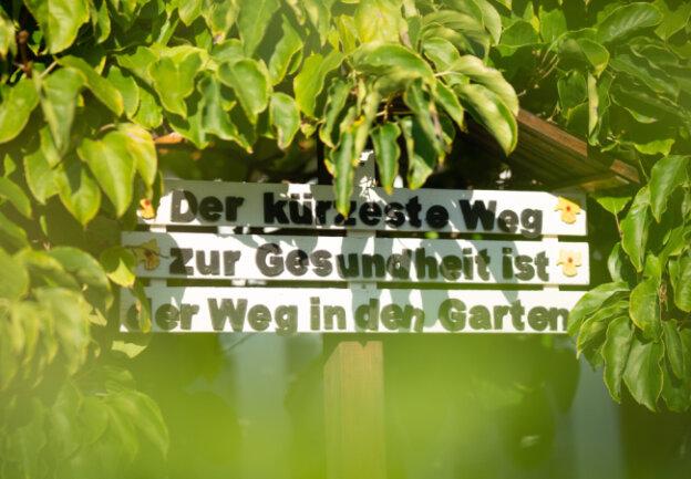 Langjährige Gärtner wissen, warum sie das eigene Stück Grün nicht aufgeben wollen: Es hält Leib und Seele zusammen.