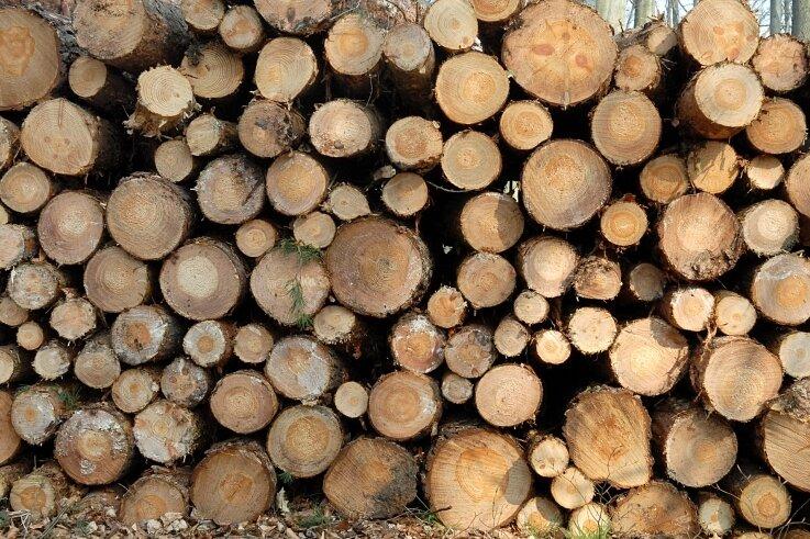 Aufgestapeltes Holz: Auch im Frauensteiner Wald musste viel mehr eingeschlagen werden als geplant.