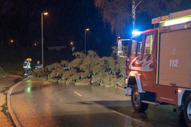 Ein umgestürzter Baum blockierte am Samstagabend eine Straße in Treuen.