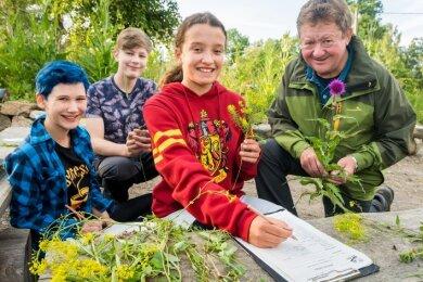 Naturschutzhelfer Jürgen Teuchert unterstützt Elody Schwarz, Moritz Reichel und Lotta Koppa (v. r.) bei der Bestimmung von Pflanzen.