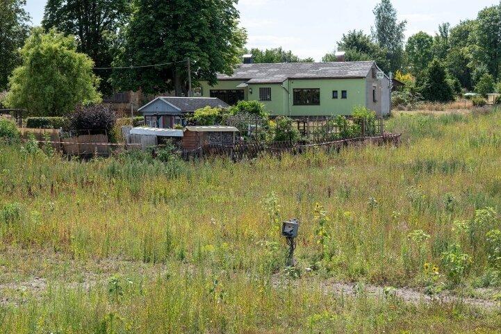 """Dreiviertel der Gärten der Peniger Anlage """"Frohsinn"""", die dem neuen Wohngebiet weichen müssen, sind bereits eingeebnet. Auf dieser Parzelle einer Pächterin lastet ein Rechtsstreit um die Entschädigung."""