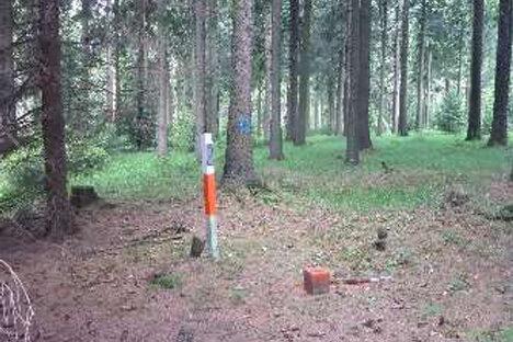 Ein Messpunkt im Wald.
