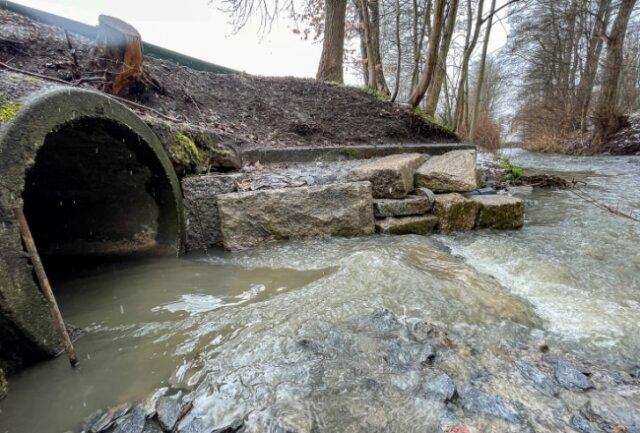 Am Regenüberlauf, der im Hofaupark in die Göltzsch mündet, hatten Passanten kürzlich einen üblen Geruch wahrgenommen.