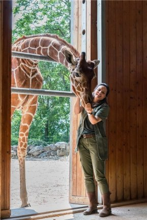 Heute startet im Ersten die letzte Staffel mit sechs neuen Folgen. Giraffenbulle Hugo kommt wieder zu Kräften. Bei der Behandlung der schweren Arthritis greift Dr. Susanne Mertens (Elisabeth Lanz) auf ein bewährtes Heilmittel aus der Humanmedizin zurück.