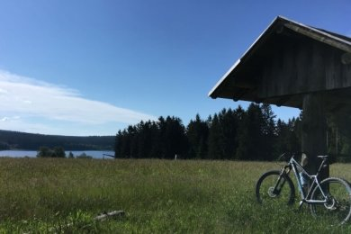 Vom Radweg aus bietet sich ein herrlicher Ausblick auf die Talsperre Muldenberg.