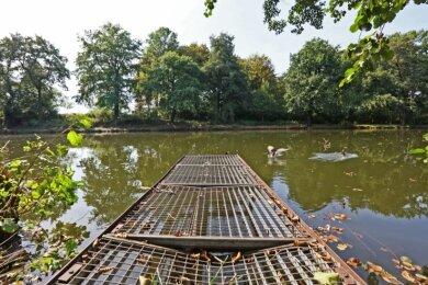 Das trostlose Aussehen des Langen Teichs im Zwickauer Schwanenteichpark soll bald der Vergangenheit angehören.