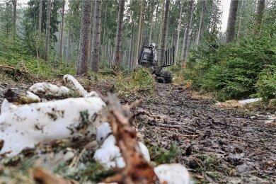 Derzeit eine Qual für Wanderer: Ein verschlammter Weg im Waldgebiet rund um die Morgenleithe.