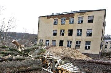 Auf dem Gelände der ehemaligen Frauenklinik in Lichtenstein kreischten die Sägen.