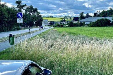 """Auf dem Feld zwischen """"Haus der Geborgenheit"""" und dem Einkaufsmarkt """"Nah & frisch"""" an der Hartensteiner Straße in Wildenfels (Foto) sieht der Vorschlag der Verwaltung ein Mischgebiet vor."""