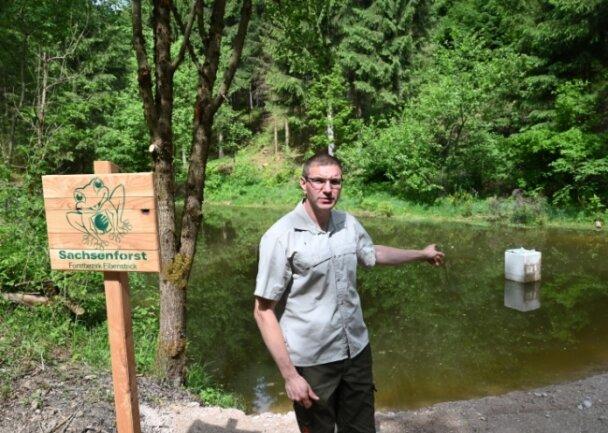 Der Neuheider Teich im Forstrevier Schönheide ist saniert worden - im Bild Revierförster Alexander Clauß.