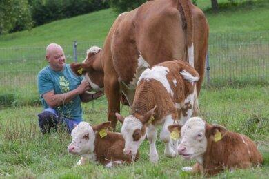 Landwirt Mike Schöniger mit Mutter-Kuh Astrid und den Drillingen Anna, Adi und Alma. Ein Drillingsgeburt ist laut Experten sehr selten.
