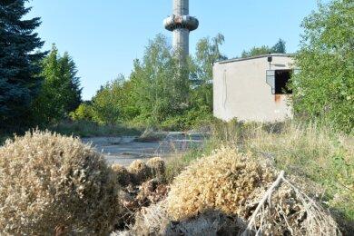 Das derzeit brachliegende Areal der alten Gärtnerei mit Heizhaus an der Siebenlehner Preußerstraße könnte einmal ein Wohngebiet werden. Das zumindest sieht der Entwurf des Flächennutzungsplans vor.
