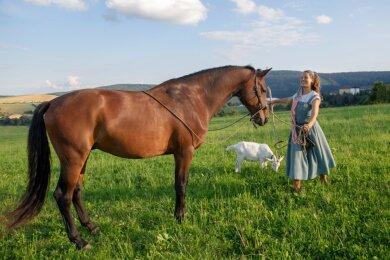 Eine eingeschworene Gemeinschaft, die sich blind vertraut: Siarah Katharina mit ihrem Pferd Cordelleo und ihrer Ziege während ihrer kurzen Wanderpause in Oberwiesenthal am Mittwochabend, wo sie vor ihrer Weiterreise privat übernachtete.