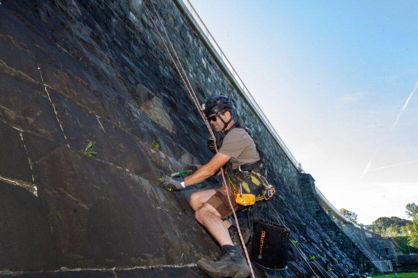 Industriekletterer befreien Pirker Staumauer von Anflug