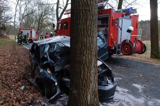 Eine Frau (20) ist am Dienstagmorgen auf der S 295 zwischen Lengenfeld und Mühlwand gegen einen Baum geprallt.