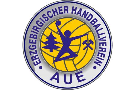 Handball: EHV Aue unterliegt im ersten Auswärtsspiel