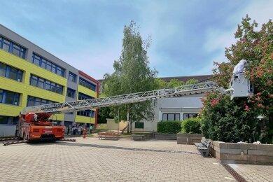 Die Wilkau-Haßlauer Feuerwehrleute mussten die Drehleiter der Berufsfeuerwehr Zwickau anfordern, um den tierischen Rettungseinsatz an der Comenius-Grundschule ausführen zu können.