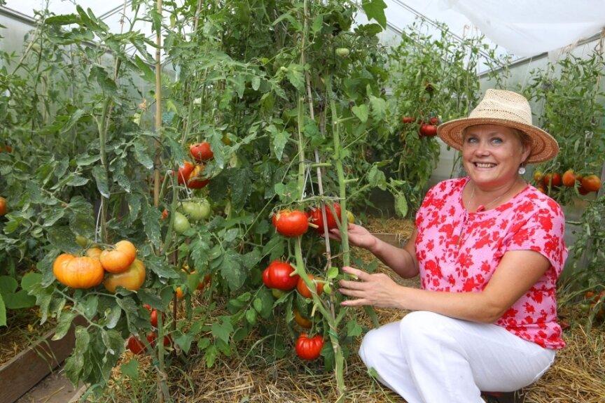 Tomatenkönigin Svetlana Hüttner. Bei ihr könnte ein Gewächshaus auch fünfmal so groß sein.