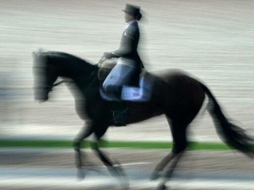 Ein Reiter erhielt bereits eine Wettkampfsperre