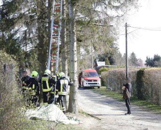Im zweiten Anlauf konnte die Feuerwehr das Tier dann von dem Baum holen.