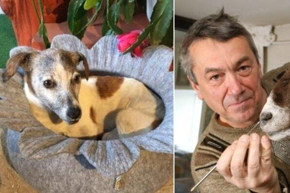 Tierpräparator aus Lobsdorf: Eine Katze kostet bei ihm 250 Euro