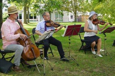 """Statt im Konzertsaal und in feinem Zwirn, spielten die Musiker an schattigen Plätzchen im Park """"Neue Welt"""". Im Bild das Streichertrio Dietrich Mund (Cello), Steffen Burkhardt (Viola) und Freya Sachs (Violine)."""