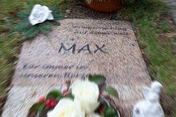 Die Grabstelle am Mittwoch. Am 4. März vergangenen Jahres wurde Max auf dem Zentralfriedhof in Schwarzenberg bestattet.