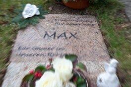 Die Grabstelle des toten Jungen. Am 4. März vergangenen Jahres wurde Max auf dem Zentralfriedhof in Schwarzenberg bestattet.