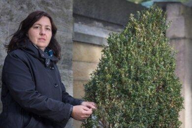 Die Raupen des Buchsbaumzünslers richten auch auf dem Dresdner Johannisfriedhof großen Schaden an. Beatrice Teichmann zeigt den Befall.