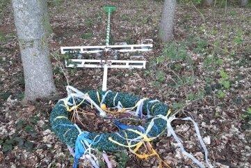 Der gestohlene Maibaum aus Grünberg wurde im Wald nahe der Plattenstraße abgelegt, die nach Flöha führt.