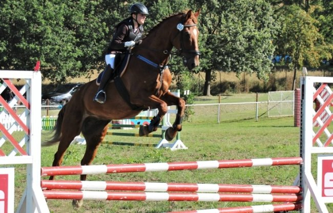 Nele-Marie Nörenberg vom Erzgebirgischen Pferdesportverein Großrückerswalde beim Springwettbewerb.