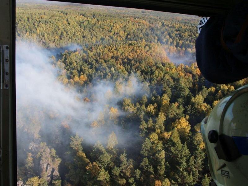 Feuerwehrleute aus Tschechien und Deutschland bekämpfen einen Waldbrand in der Sächsisch-Böhmischen Schweiz.