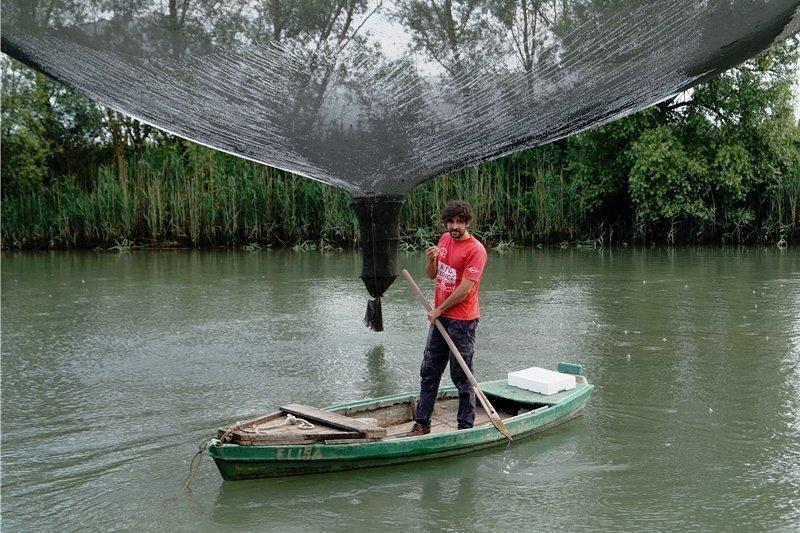 Der junge Mann und das Netz: Daniele Ciprian schaut nach seinem Fang. Heute sind es nur ein paar Brassen, Plötzen und eine Flunder.