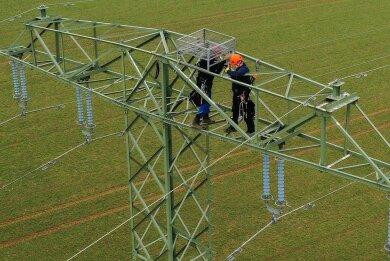 In etwa 25 Metern Höhe haben Mitarbeiter der Deutschen Bahn eine Nisthilfe für Fischadler auf einem Strommast angebracht.